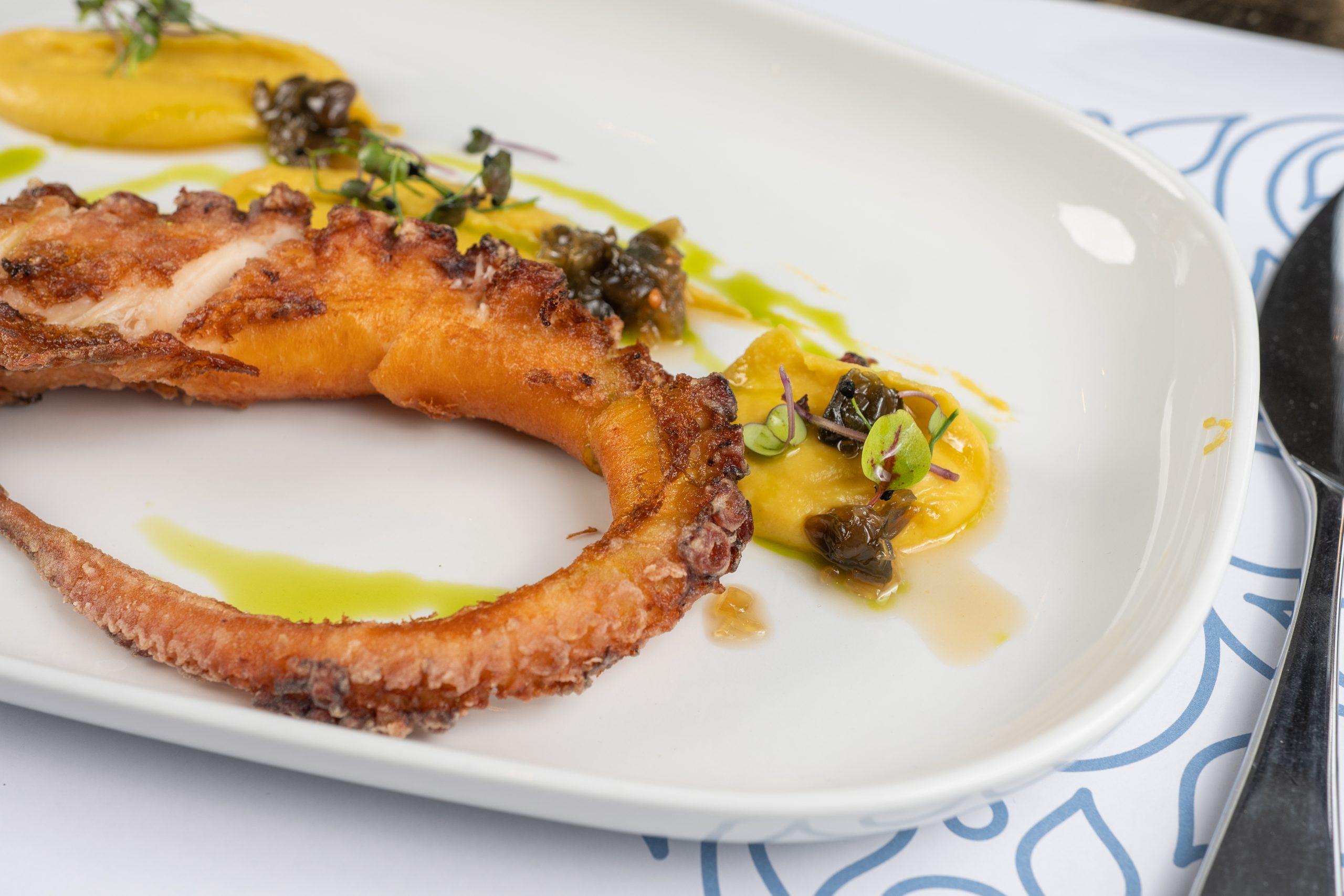 luxury seafood restaurants in Chania- Almyvita seafood restaurant in Almirida- Octopus